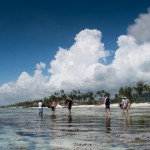 Matemwe-guests-reef-walk