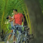 Explore the island by bicycle