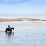 Horse riding in paradise