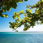 View to sencar island
