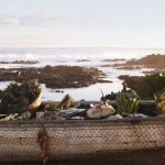 SHM_FR-Shack_Boat_Landscape_RGB